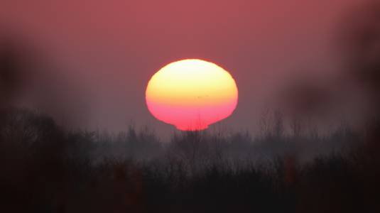 Wschód Słońca nad Biebrzą