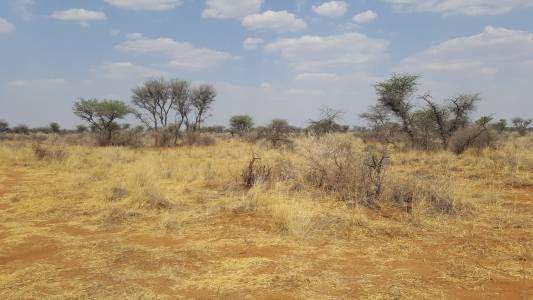 Obraz suszy w 2016 r.