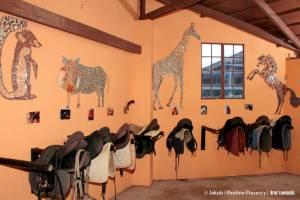 Każdy koń ma oddzielny zestaw akcesoriów