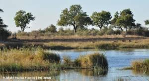 Krajobraz doliny rzeki Kwando