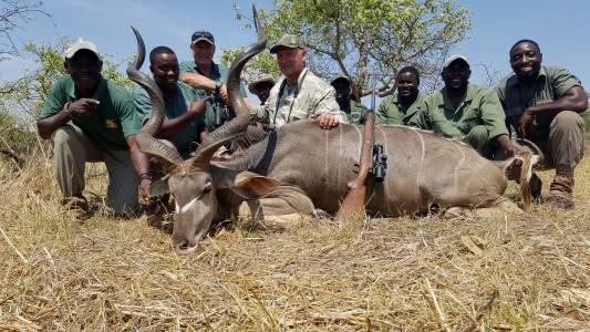 Polowanie na kudu w Zimbabwe