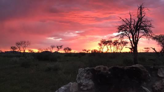 Zachód Słońca w obozowisku Kambaku podczas safari