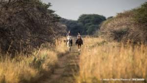 Afrykańskie historie opowiadane w drodze