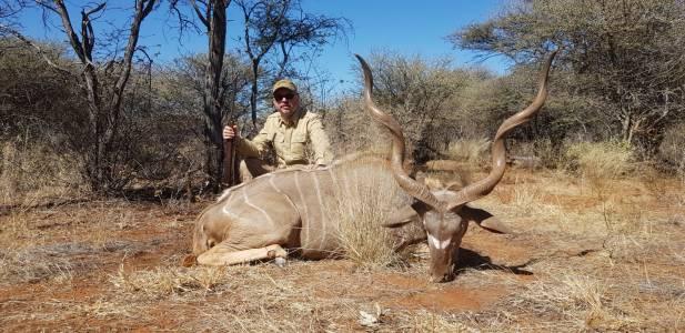 Byk oceniony na 12 lat. Największy ze strzelonych dotąd w Kambaku