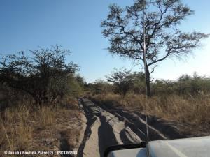 Droga do Nambwa