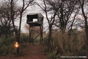 Nocleg w bush campie