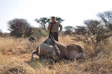 Pierwszy eland