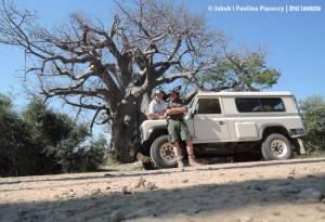 Przy dużym baobabie
