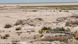 Solna pustynia