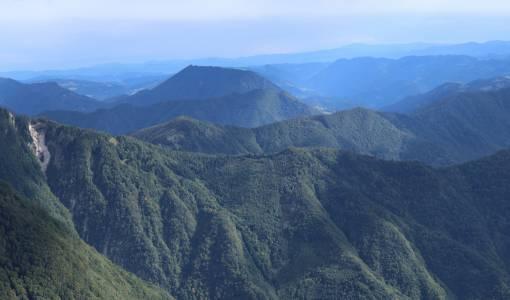 Widok z góry Vogel