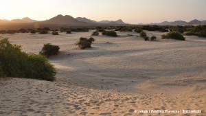 Zachód na pustyni